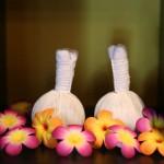 Massage aux plantes